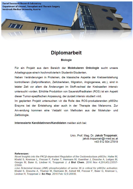 Dipl_Stellenausschreibung_DSL