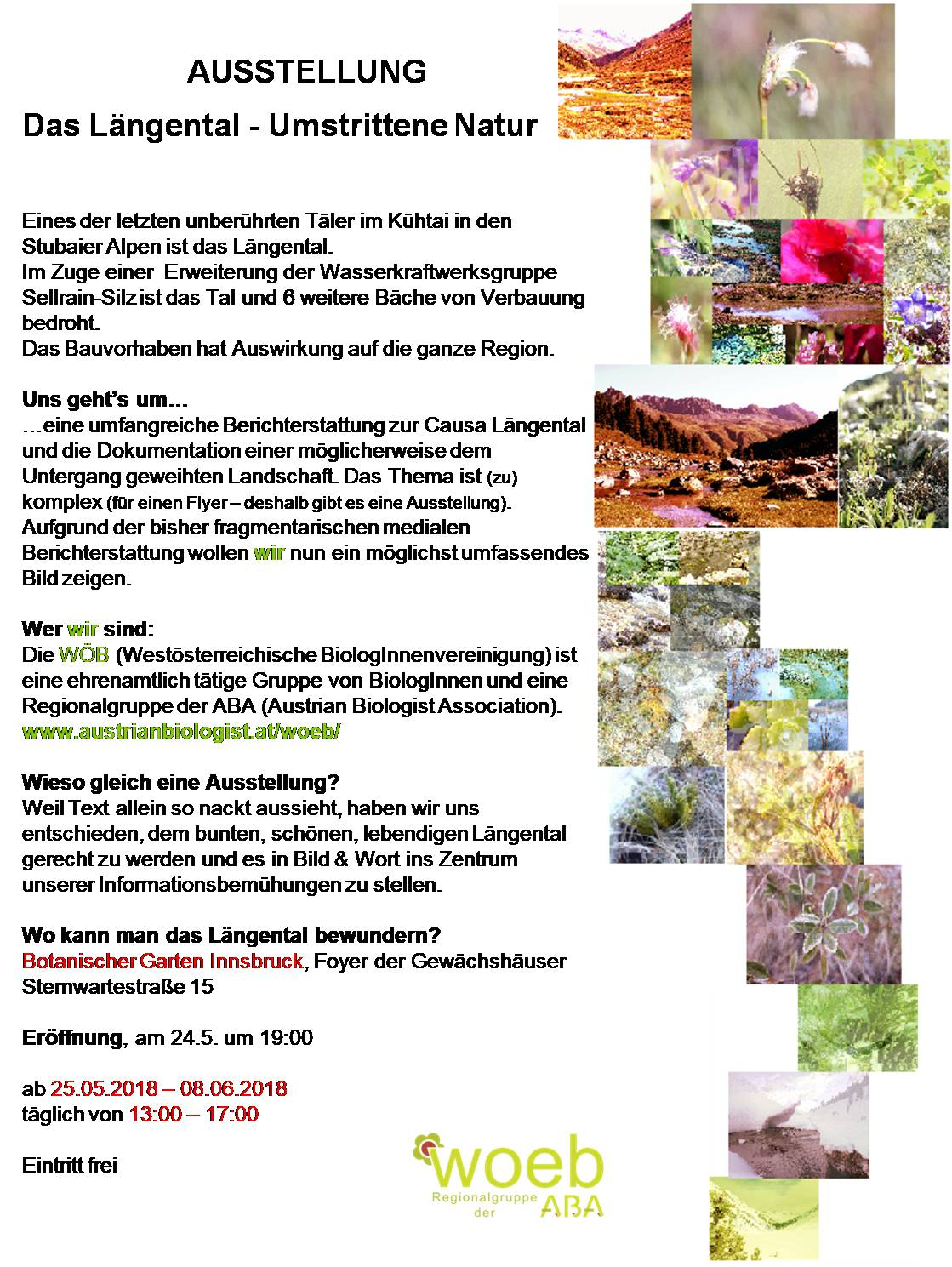 Flyer Längental