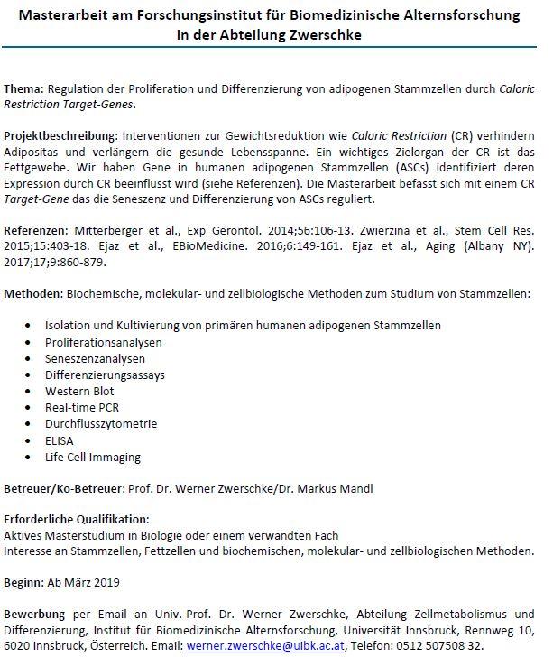 Masterarbeit Abteilung Zwerschke 2
