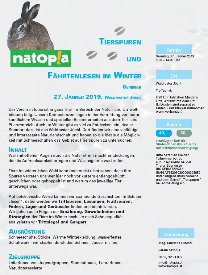 Tierspuren im Winter